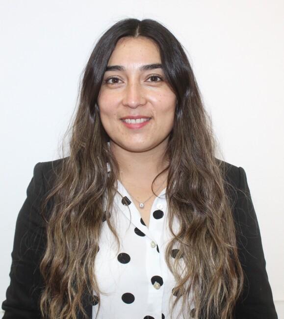 Social - Viviana Aravena Tapia